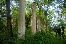 Ruins of Mount Ida Talladega County, Alabama