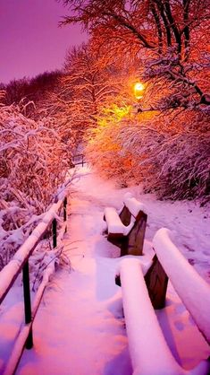Winter love all cold weather Winter Szenen, Winter Love, Winter Magic, Winter Night, Winter Sunset, Winter Walk, Winter Photography, Nature Photography, Snow Scenes
