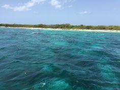 #DominicanRepublic #CatalinaIsland #IslaCatalina #Caribbean #snorkeling #clearwater #summer #travel #destination #holiday #corals Corals, Dominican Republic, Summer Travel, Snorkeling, Caribbean, Waves, Beach, Holiday, Outdoor
