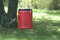 Easy DIY Hummingbird Feeder | Ziggity Zoom