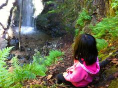 5 Great Waterfall Hikes for #Kids. Short walks that aren't too steep. #hiking…