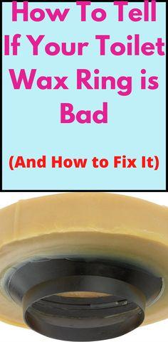 Toilet Ring, Leaking Toilet, Toilet Repair, Wax Ring, Fancy Schmancy, Home Repairs, Wax Seals, Bath Room, To Tell