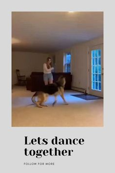 Lets Dance, Training Your Dog, Let It Be, Dogs, Animals, Animales, Animaux, Pet Dogs, Doggies