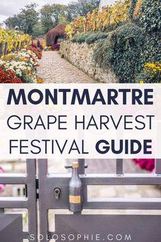 Montmartre Grape Harvest Festival (Fête des vendanges de Montmartre). Here's your guide to enjoying wine in Paris, France!