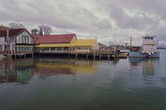 Dennett's Wharf Restaurant in Castine Maine. ©2014 Anne Lacy