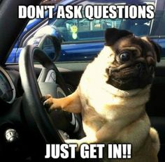 Don't ask questions -- just get in!