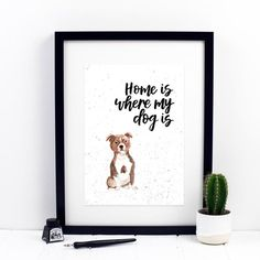 Home Is Where My Dog Is Staffordshire Bull Terrier Print Staffordshire Bull Terrier, Watercolor Print, Dog Breeds, Things To Think About, Quote, Lettering, Pop, Prints, Collection