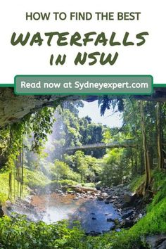 Planning to visit the best waterfalls in NSW? We have covered dozens this year alone on our road trip and share our tips here. These are perfect to add to your road trip from Sydney. Some can even be seen on a short day trip. #Australia #Waterfalls New Zealand Itinerary, New Zealand Travel Guide, Australia Travel, Sydney Australia, Western Australia, Picnic Area, Travel Destinations, Travel Tips, Travel Ideas