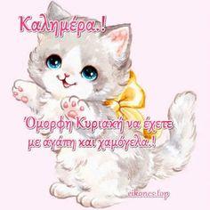 Καλημέρα σε όλους και καλή Κυριακή με Εικόνες Τοπ.! - eikones top Teddy Bear, Toys, Animals, Activity Toys, Animaux, Animal, Animales, Toy, Teddybear