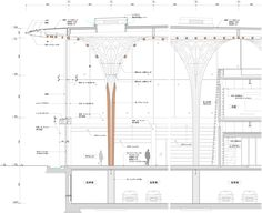 Detailed section through Atrium space  Courtesy of Shigeru Ban Architects
