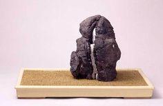 Suiseki rock: Kamogawa-murasaki-kifune-ishi