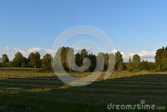 Photo about Norwigian agriculture in hedmark norway. forest and blue sky in the background. Image of agriculture, blue, colors - 121747881 Norway Forest, Blue Sky Background, Agriculture, Stock Photos, Nice, Colors, Amazing, Summer, Image