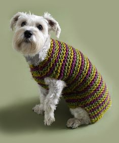 Striped Dog Jumper in Lion Brand Wool-Ease Thick & Quick