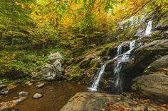 Dark Hollow Falls in Shenandoah National Park Virginia