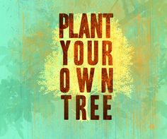Plant your own tree! :D