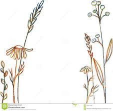 Image result for line drawing flowers