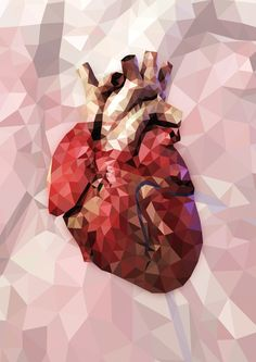 Lowpoly of a human heart by Cutelitis on DeviantArt