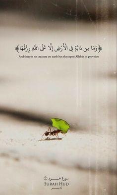 Allah is the best creator Islamic Qoutes, Muslim Quotes, Religious Quotes, Arabic Quotes, Beautiful Quran Quotes, Quran Quotes Inspirational, Coran Quotes, Hijrah Islam, Quran Arabic