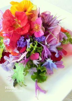 -Edible flower salad-