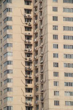 Xi'an, berceau de la Chine #china #xian #architecture #windows