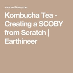 Kombucha Tea - Creating a SCOBY from Scratch | Earthineer