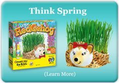 Creativity for Kids - Grow a Hedgehog