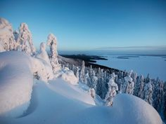 Become inspired to travel to Finland. Discover fantastic things to do, places to go and more. Visit the official Travel Guide of Finland here. Finland, Travel Guide, Countries, Places To Go, Things To Do, Scenery, Landscapes, Europe, Winter
