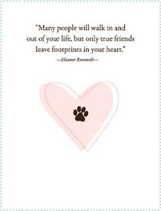 commemorate the loss of a pet with a pet sympathy card