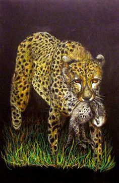 Cheetah and Baby. Color Pencil Drawing. Black Paper 9X12. Summer Color Pencil Class 2011 by HaileyDHarris.deviantart.com www.facebook.com/haileydharrisartwork