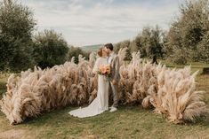 @curiouscountry posted to Instagram: This Pampas grass wedding backdrop is dreamy!!  Create this look with our feathery pampas grass now back in stock!  (Photo from Pinterest)  #weddinginspo #weddingreception #receptionideas #bohowedding #weddingideas #weddingdecor #weddingbouquet #bridetobe #bridalbouquet #weddingdecor #weddingseason #weddingparty #weddinginspiration #pampas #pampasgrass #bohobride #contemporarybride #contemporarywedding #dreamywedding #pampaswedding #weddingstyle #naturaldecor