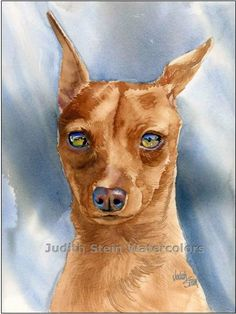 MINIATURE PINSCHER Min Pin Dog 11x15 Watercolor Art Print. $40.00, via Etsy.