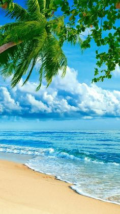 Randki Delray Beach