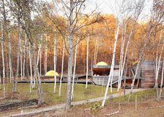Platform for Living - Outdoor clothing designers Setsumasa and Mami Kobayashi built this weekend retreat in the Chichibu mountain range northwest of Tokyo from locally harvested larch wood and removable fiberplastic walls.