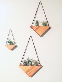 Small Reclaimed Wood Triangle Air Plant Hanger - Air Plant Included This wall triangle hanging is sure to create a beautifully unique and sustainable living wall in yo