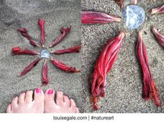 hibiscus bud mini mandala on the beach after I had drawn them in my #natureart sketchbook