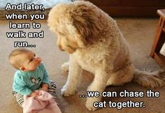 Fun challenge: try not to laugh - funny & cute dogs and kids Baby Puppies, Baby Dogs, Cute Puppies, Cute Dogs, So Cute Baby, Cute Babies, Babies Stuff, Baby Animals, Funny Animals