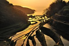"""This is the scenery of early Japan. The guide to the best """"terraced rice fields"""" 