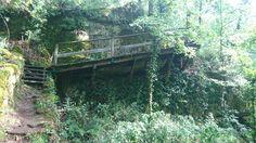 Garden Bridge, Aquarium, Outdoor Structures, Paths, Goldfish Bowl, Aquarium Fish Tank, Aquarius, Fish Tank