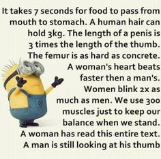 Funny Minion quotes of the hour – 20 pics... - 20, Funny, funny minion quotes, hour, Minion, pics, Quotes - Minion-Quotes.com