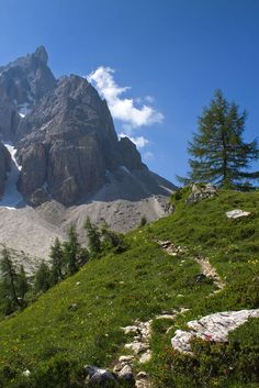 ALPINE PATHWAY_Pale di San Martino_Italy