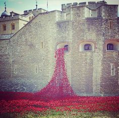 Stunning art installation in London to honour lives lost in WWI.   'Blood Swept Lands and Seas of Red' | Slim Paley