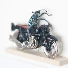 Framed Beetle Insect Art Weevil Riding Motorcycle. $90.00, via Etsy.
