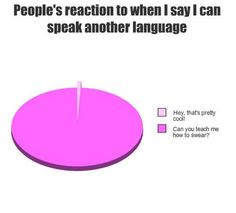 """ugh - SO TRUE - the pie chart is missing the sections that represents the % of people who ask me to """"say something"""" so they can hear what """"that language"""" sounds like! that's usually when i tell them- IRSE a La CHINGADA- LA PUTA! Stupid Funny Memes, Funny Relatable Memes, Haha Funny, Funny Texts, Funny Stuff, Random Stuff, Funny Pie Charts, Period Humor, Funny Pins"""