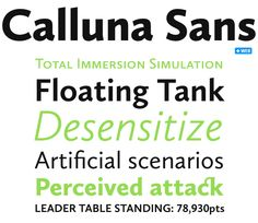 Google Image Result for http://cdn.myfonts.net/s/ec/rs-201101/rs-calluna-sans-pw3.png