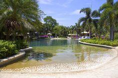 westin golf resort and spa in Playa conchal - Royal Beach Club Pool