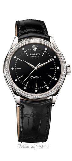 Regilla ⚜ The new Rolex Cellini 2015/16