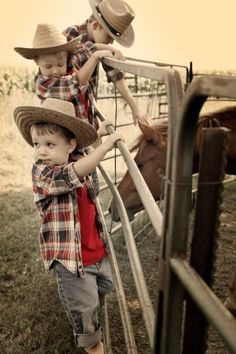 boys on the farm