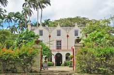 """Full-Day Tour of Bridgetown Highlights Including Harrison's Cave, Bathsheba Beach and More """"Los Barbadoes"""" was the first name given to Barbados by the Portuguese. It means the """"bearded one,"""" after the bearded fig trees that grow on the island. You will have an opportunity to see some of these trees at our very first stop on this tour. The tours first stop is Harrison's Cave. A visit to Barbados will not be complete without a stop in Bathsheba, famous for its breathtaking beaut..."""