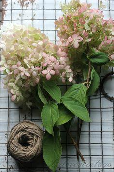 DIY: How to dry Hydrangeas http://Lizlovesvintage.blogspot.com