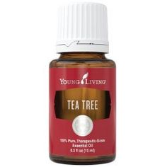 Young Living Tea Tree Essential Oil - 15ml -- Read more  at the image link.